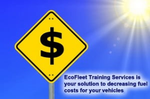 Eco Fleet Solutions